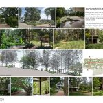Java Rain | Ficus - Sheet4