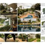 Java Rain | Ficus - Sheet5