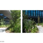 The Biotope By Henning Larsen - Sheet5