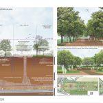 Naubad Karez | Ficus - Sheet5